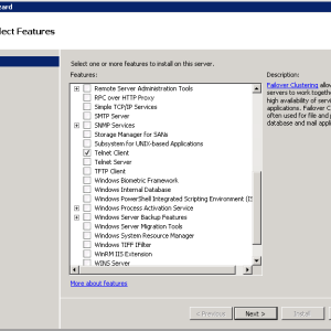 Windows Server 2008 Telnet Client